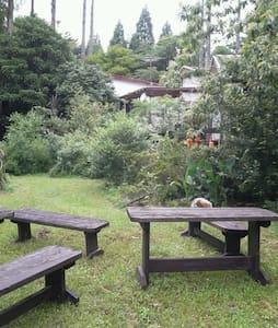 森のオーガニック果樹園 ゲストハウス