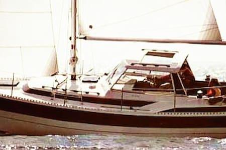 Boat & Cruise Lake Maggiore - Boat