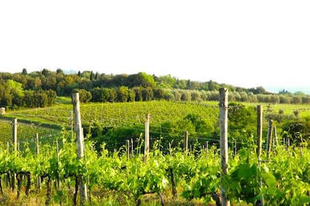 Gorgeous Chianti Views Near Siena & Florence - Villa A Sesta - House