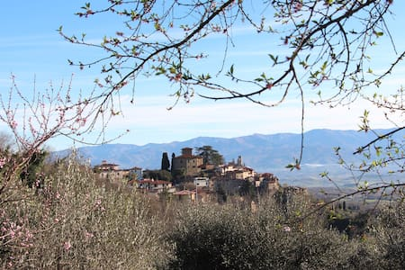 Your Own Fully Self-Catered Tuscan Villa - Montegonzi