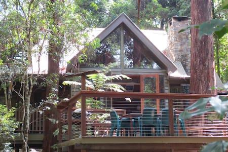 Coolgarra Bush House - Springbrook - Casa