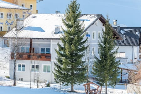 "Apart hotel ""Alpeneer""-400m from ski lift. - Lackenhof"