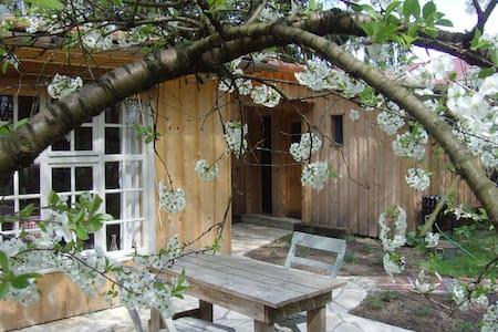 Außergewöhnliche Holzhütte im Wald - Barraca