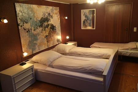 Große Altbauwohnung - all inclusive - Apartment