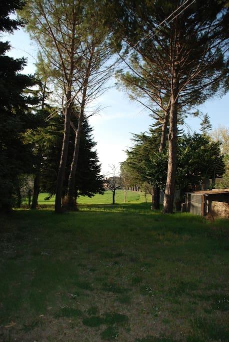 esterno - parco
