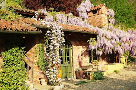 B&B under wisteria - Turin