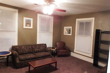 Whole apartment near downtown Macon and Mercer! - Macon - Apartment