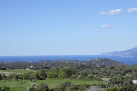Bungalows at 20 minutes from SAINT FLORENT - Saint-Florent - Bungalow