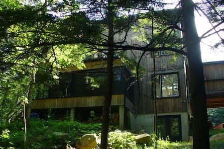 Fenêtres ouvertes sur la forêt - Dům