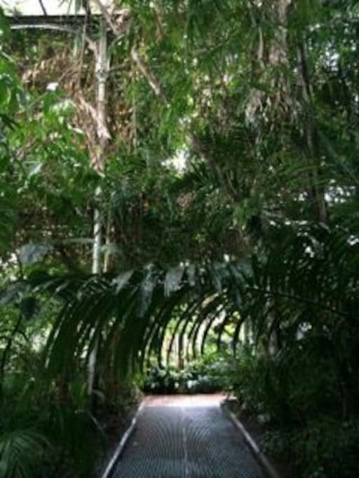 Botanical Gardens, two minutes away (you can see them from the flat, they are a good landmark).