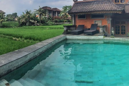 This accommodation located at Jalan Bisma Ubud about 5 minutes walking distance through the endless ricefield view.  Enjoy your experience to stay in quiet Balinese house with relaxing swimming pool overlooking to overlay ricefield.