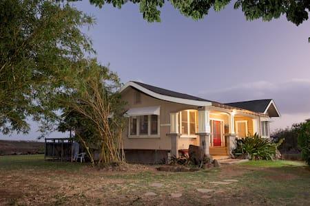 The Ishihara Home