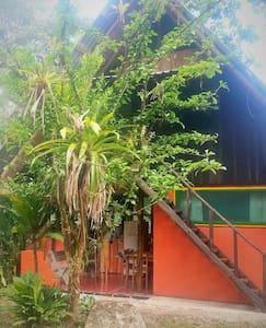 El Jardin Tortuga - Cabinas - Ojochal - House