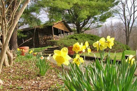 Romantic Hudson Valley Log Cabin - Stanfordville - Kisház