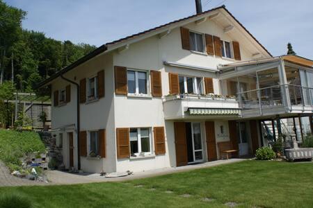 Neu renovierte Wohnung am Wald - Apartemen
