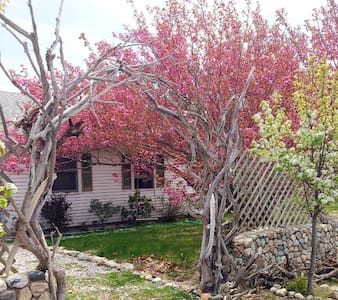 North Truro Home THANKSGIVING Week Available - North Truro - Haus