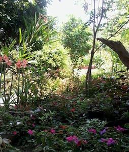บรรยากาศแบบท้องถิ่น สงบ สบาย - Chiang Mai - Inap sarapan