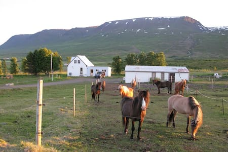 Near Akureyri large family room In cosy farmhouse - Huis