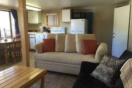 Cute, Affordable Lake City Rental, Open Year Round - Lake City - Appartement