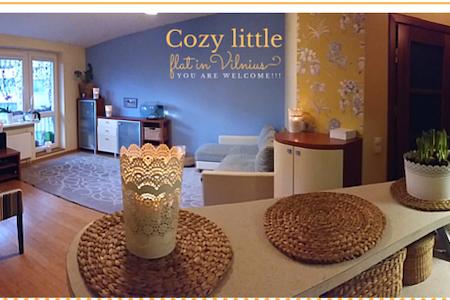 Cozy, studio type little flat. - Vilnius - Apartment