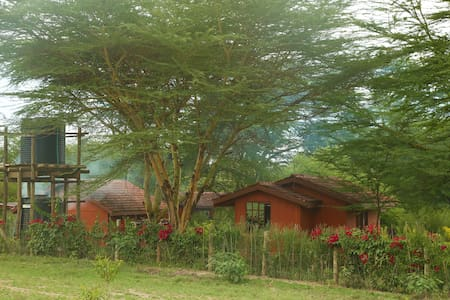 Charming holiday cottages - Gilgil - Maison