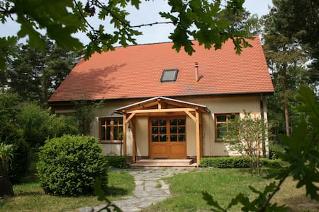 Ostseehaus-Strandkiefer - Dom