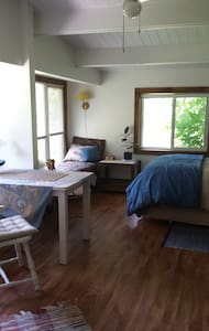Balmy Bed and Breakfast - Bed & Breakfast