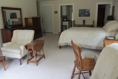 Private, studio apartment in YS - Yellow Springs