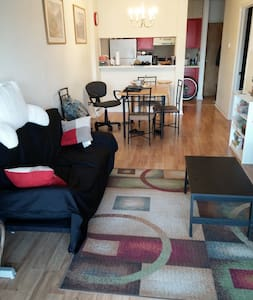 No pets bar-district apt in 5points - Columbia - Apartment