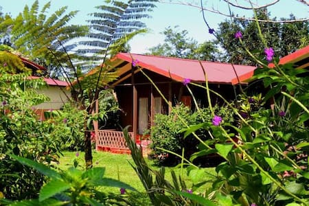 Cabin with volcano view - a/c - La Fortuna - Bed & Breakfast