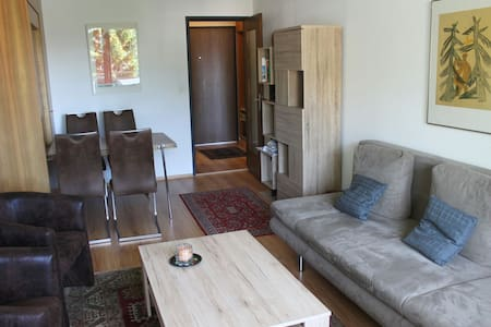 Cosy 2.5 room Apartment with View - Leilighet