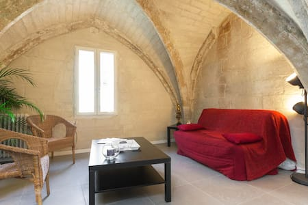 Charmant T2 Avignon Intra-Muros - Awinion - Apartament