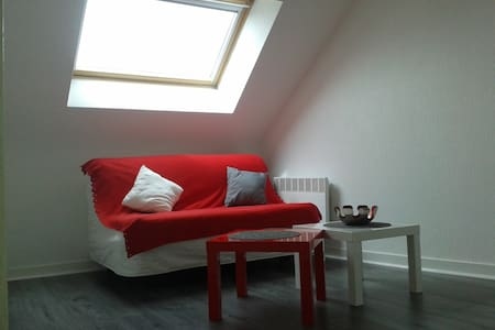 appartement/studio vannes st patern - Apartment