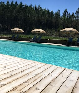 Sunny Cosy - Tosse - Chalet