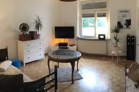 Stilvolle helle Altbauwohnung - Apartment