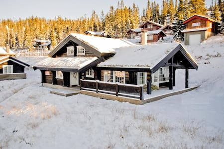 Large cozy cabin in the mountains - Chalet
