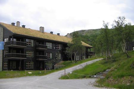 Tyin-Filefjell: Big, modern apartment (ski in/out) - Vang - 公寓