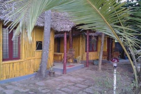 SB Regency  Sea front Cottage