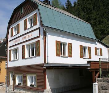 Apartmán 7 v horském městečku Janov - Casa