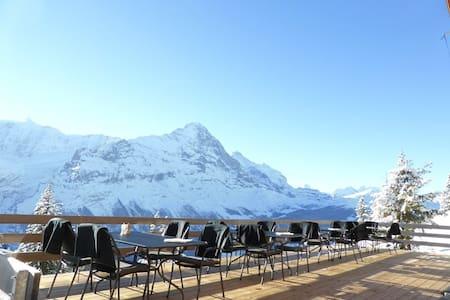 Berggasthaus Waldspitz - Grindelwald - Bed & Breakfast