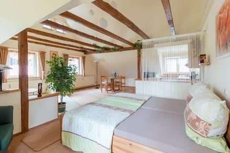 Thüringer Waldbaude-Studio Bergsee - Apartament