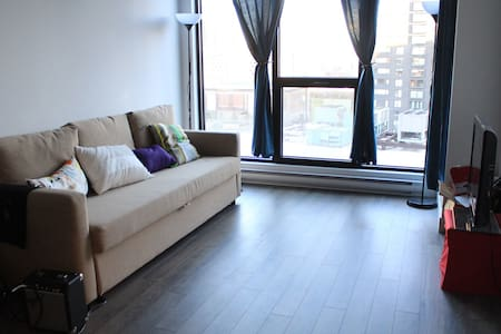 Brand-new Montreal Condo (Downtown)