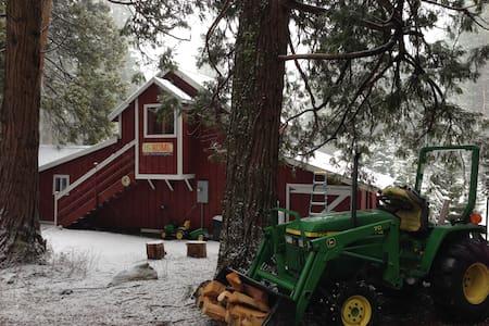Sunny and Quiet Shasta Barn Cottage - Mount Shasta