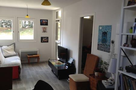 Appartement idéalement situé - Annecy - Appartement