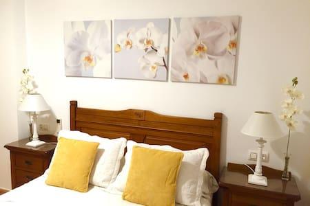 Beautiful room with pool & garden - Villa