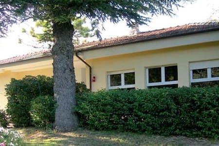 bed and breakfast La Scuola Urbino - Urbino - Bed & Breakfast