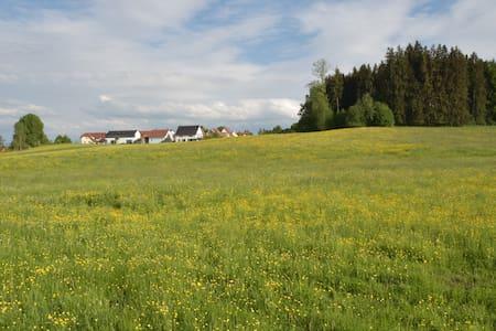 Gemütliche Wohnung mit Waldblick - Wohnung