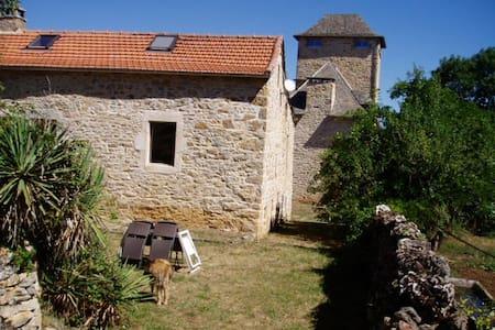 Gîte de Mejanet - Saint-Rémy - House