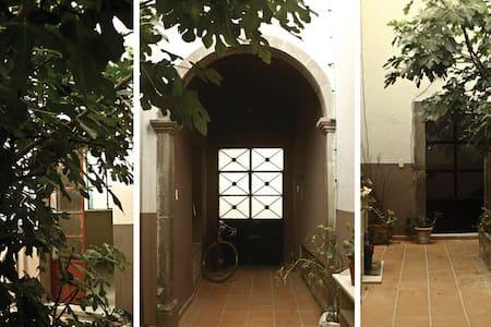Casa Higo en el Centro Histórico - San Luis Potosí