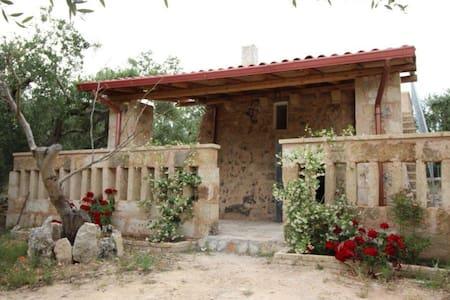 Pajara con ampio giardino vicino al mare - Montesardo